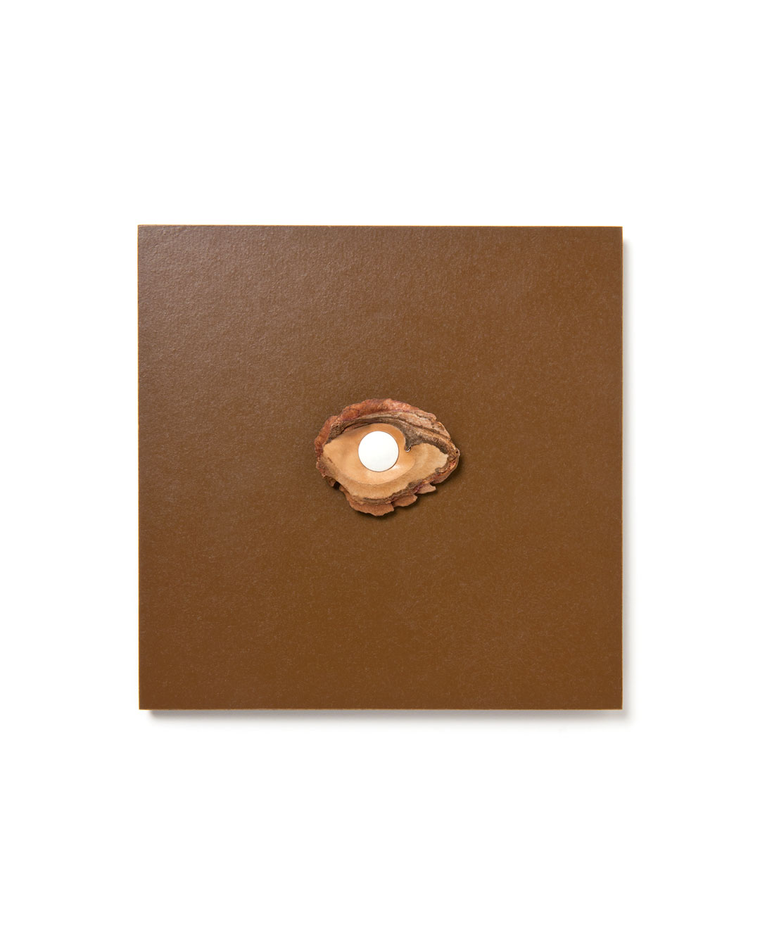 Otto Künzli, Auge V (Eye V), 2017, brooch; HDF, peach stone, sepiolite, Polystyrol, gold, 110 x 110 x 12 mm, €4300